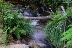 agua (3)